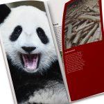 Image 12_Jimmy Le_WWF Endangered Species Brochure